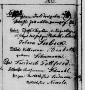Seebeck_1833